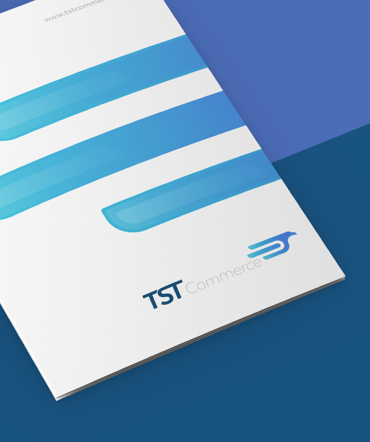 Portfolio. TST Commerce. Identidad Visual